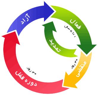 چرخه حیات دامین آی آر